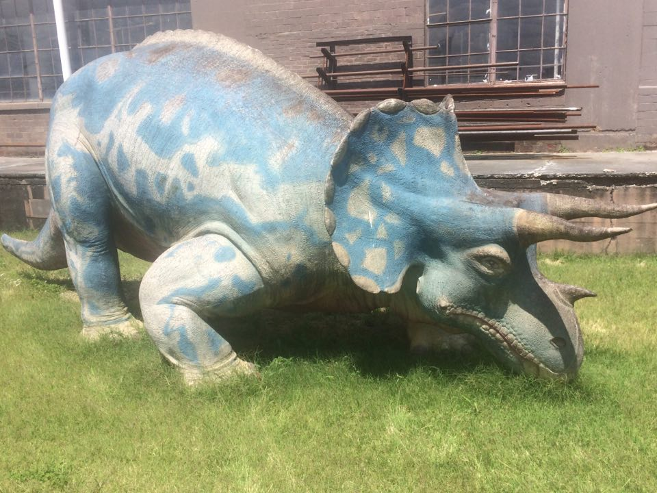 LouisvilleTriceratops